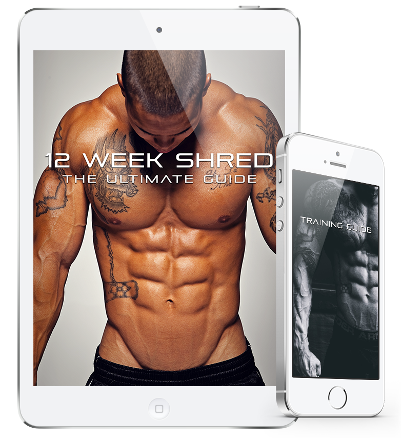 Product Review: 12 Week Shred Program: The Ultimate Guide