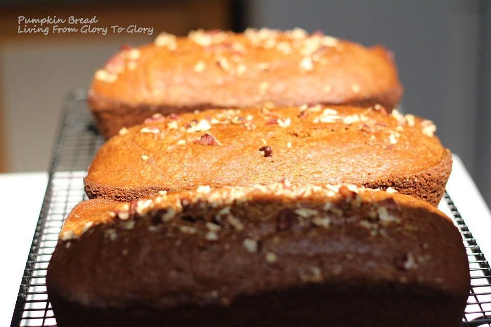... : Bob's Red Mill's Spicy Pumpkin Gingerbread | Nutrition Beast